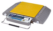 CAS®  -  RW-S/L Series Wheel Weighing Scale