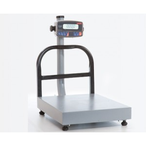 Torrey Receiving  Bench Scale 100Lb EQB 50/100